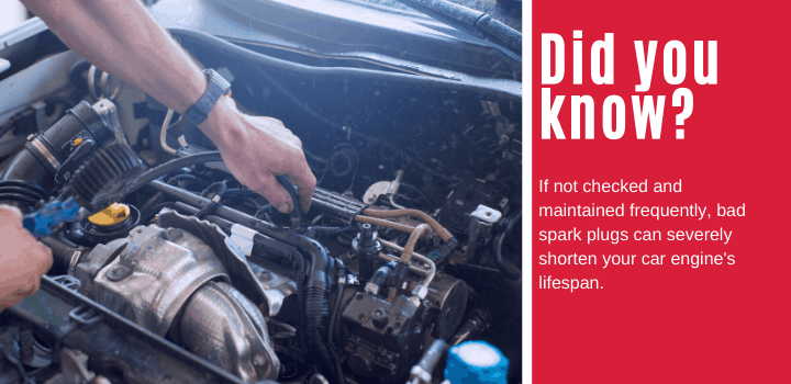 Did you know: If not checked and maintained frequently, bad spark plugs can severely shorten your car engine's lifespan.
