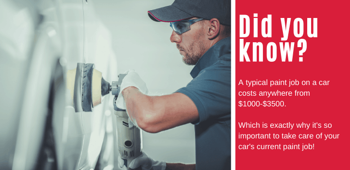 Did you know: A typical paint job on a car costs anywhere from $1000-$3500. Which is exactly why it's so important to take care of your car's current paint job!