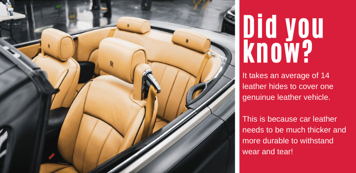 Did you know: It takes an average of 14 leather hides to cover one genuinue leather vehicle. This is because car leather needs to be much thicker and more durable to withstand wear and tear!